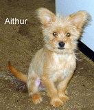 Aithur